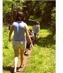 walks hike