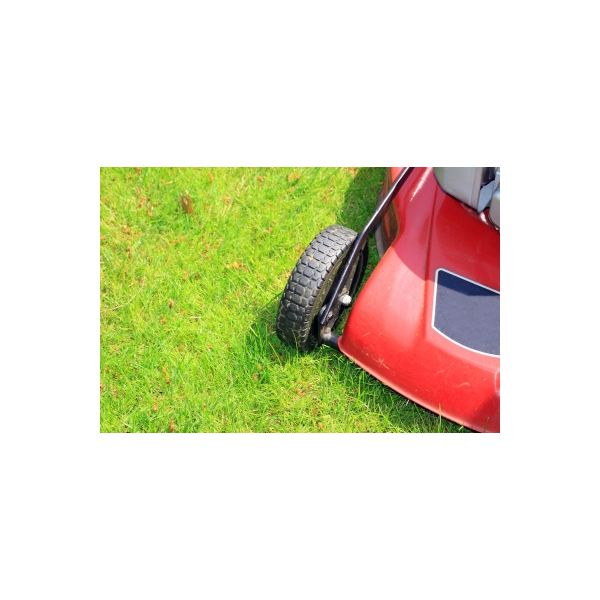 What You Really Need to Know About Starting a Lawn Mowing Business