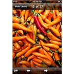 select image to email from iPhone