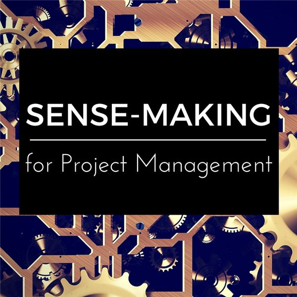 Better Project Management: Think Outside of the Park with Sense-Making