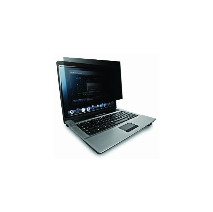 Laptop screen filter