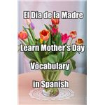 El Dia de la Madre Spanish Vocabulary Lesson