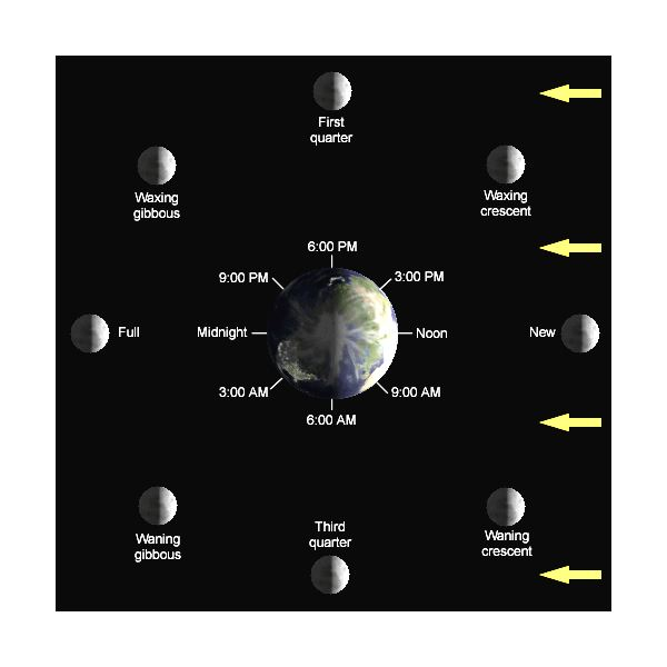 What Causes The Phases Of The Moon Manual Guide
