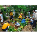 800px-US Navy 100813-N-3589B-096 Sailors participate in a community plant schrubs with local children during a community service project at the Village of Hope orphanage in Vietnam