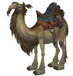 World of Warcraft Ramkahen Camel Mount