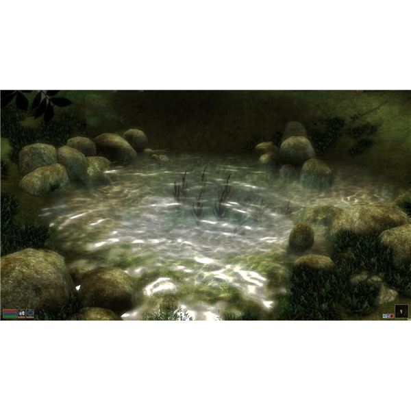 Morrowind Graphics Extender : Pond