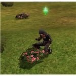 The Sims Medieval Spy Collecting Herbs