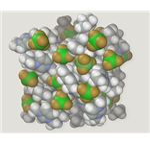 Molecular Simulation Depicting an Ionic Liquid