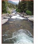 Tumbling Montana Creek