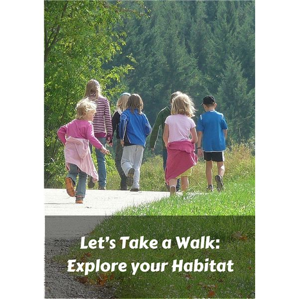 Habitat Lesson for Kids and Parents: Learn about Your Environment with a Family Walk