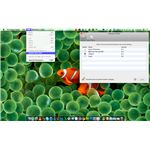 Enabling the Root User in Snow Leopard OS X 10.6