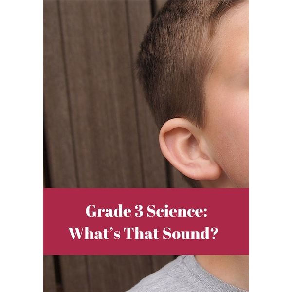 What's That Sound? Science Lesson Grade 3
