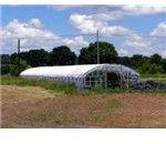 polytunnel greenhouse