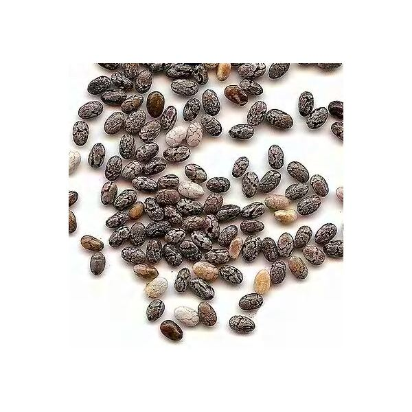 Health Benefits of Chia Seeds (image in the public domain)