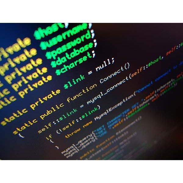 Choosing a  Career as a Freelance Web Programmer -  Is It For You?