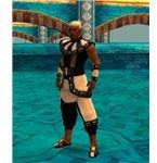 Guild Wars Monk FoW Elite Armor