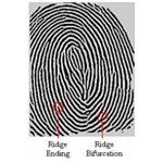 fingerprint from FBI.gov