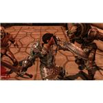 Dragon Age's Champions are warriors that provide useful AOE buffs and debuffs