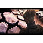 Dragon Age: Awakening Guide - Finding Velanna at the Dalish Camp - The Wending Woods