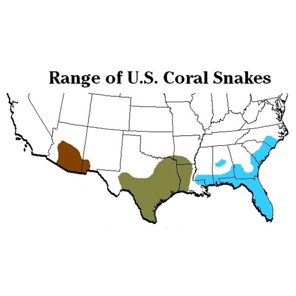 Coral Snake Facts (distribution)