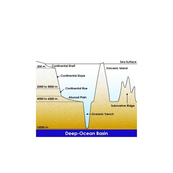 Ocean Basin. Credit: https://elearning.stkc.go.th/lms/html/earth_science/LOcanada6/604/9_en.htm
