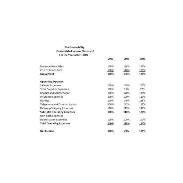 Example of Common Size Income Statement Horizontal