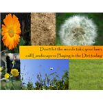 Keep gardening service postcards light and bright