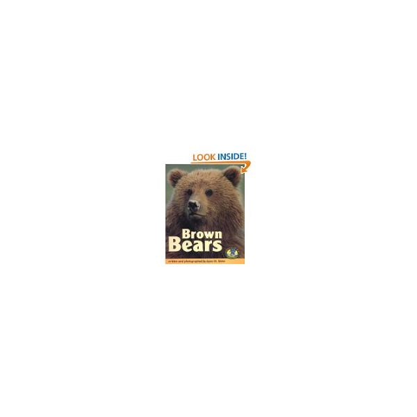 Send Your Elementary Students on a Bear Webquest - Featuring Polar Bears and Brown Bears