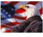 patriotic-backgrounds-eagleflag