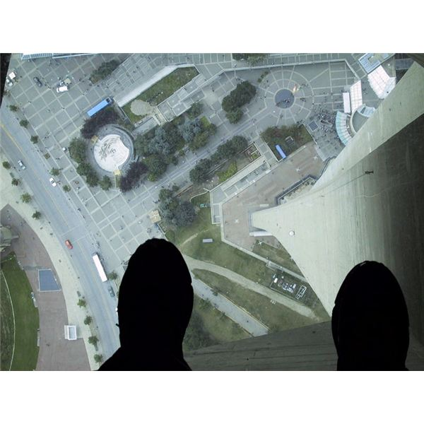 Understanding the Causes of Acrophobia