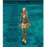 Elite Monk Armor