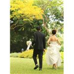 A wedding day pictorial