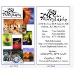 Galleria Ventures business cards for photographers.
